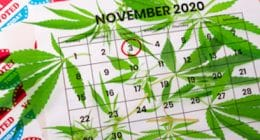 Election Legalize Marijuana