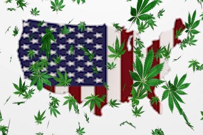 Will These 2 MSO Marijuana Stocks Make it Through 2020?