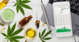 Medicinal Marijuana Stocks