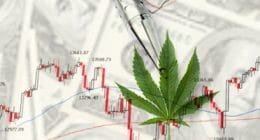 Pot Stock to Watch 2021