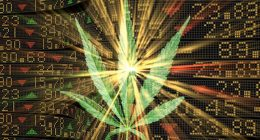 Best Cannabis Stocks for 2021