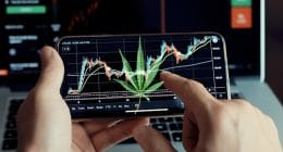 Best Marijuana Stock 2020