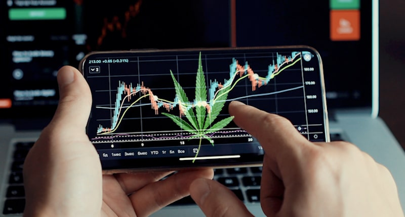 Best Marijuana Stock 2020