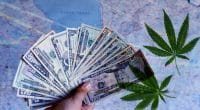 Cannabis Stock 2021 to buy now