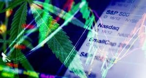Cannabis Stock To Buy Today