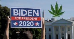 Joe Biden Election 2020 Marijuana Stocks
