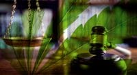 Marijuana Legalization 2020