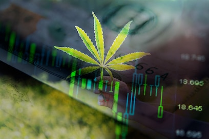 Will 2021 Give Pot Stocks The Boost They Need?