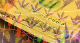 Top Marijuana Stocks for 2021