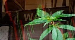 Wall St marijuana stocks