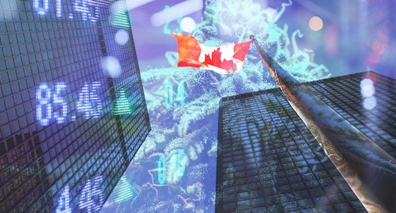 Best Canadian Marijuana Stocks To Watch Right Now