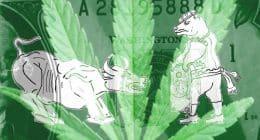 Best Cannabis Stocks in 2021