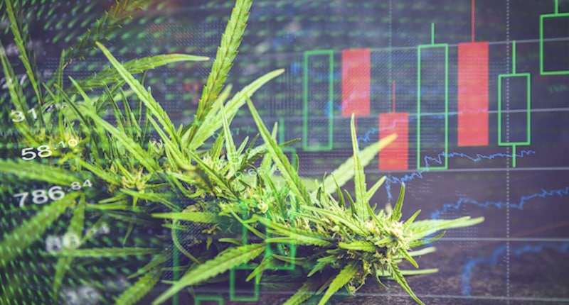 Are These The Best Cannabis Plays To Invest in For 2020?