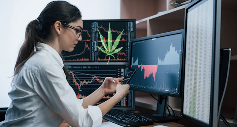 Looking For Marijuana Stocks To Buy For 2021? 2 Top Cannabis Investments To Consider