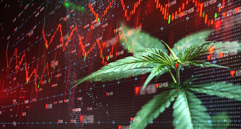 Making A List Of Cannabis Stocks to Watch For 2021? 2 Pot Stocks To Watch In December