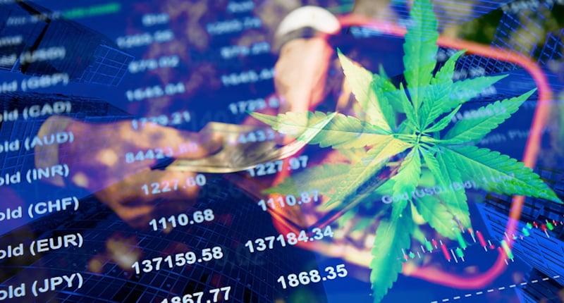 Pot Stocks To Buy Right Now For 2021