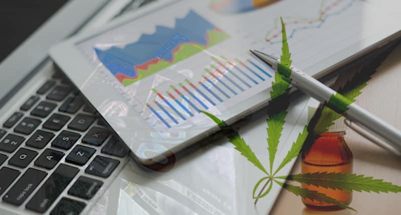 Would You Add These 2 Marijuana Stocks To Your Portfolio?