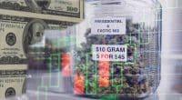 Top Marijuana Stocks For January 2021