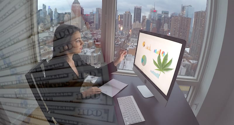 Top Marijuana Stocks In 2020