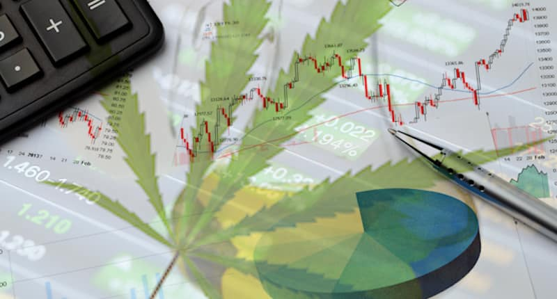 Top Pot Stock To Watch Today