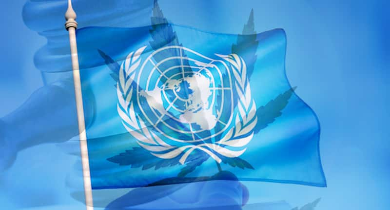 U.N. Passes Cannabis Bill