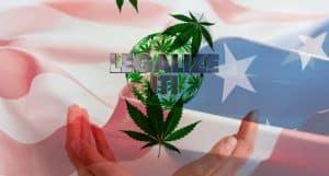 U.S. Cannabis Legalization 2020