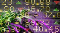 Best Marijuana Stocks In 2021 To Invest In