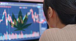 Best Marijuana Stocks To Buy For A Rebound