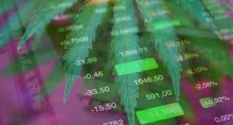Best Marijuana Stocks To Invest In For 2021 (1)