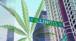 Marijuana Industry In Illinois