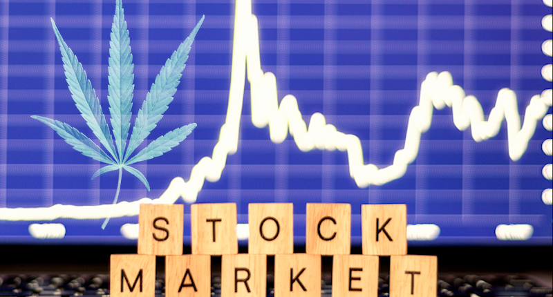 Marijuana Stocks In Todays Stock Market