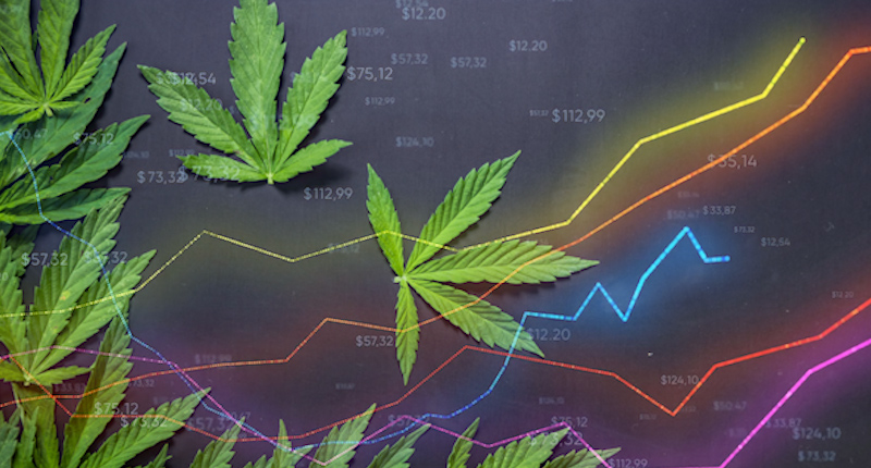 Are You Looking For The Best Marijuana Stocks In 2021?