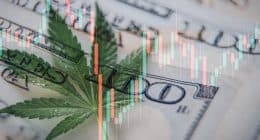Top Pot Stocks To Buy In 2021