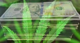 All Time Highs For Marijuana Stocks in 2021