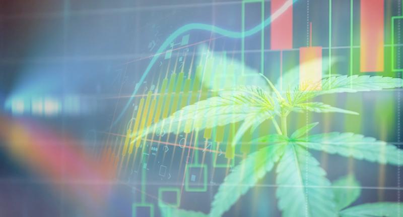 Best Marijuana Stocks To Buy Today In The Market