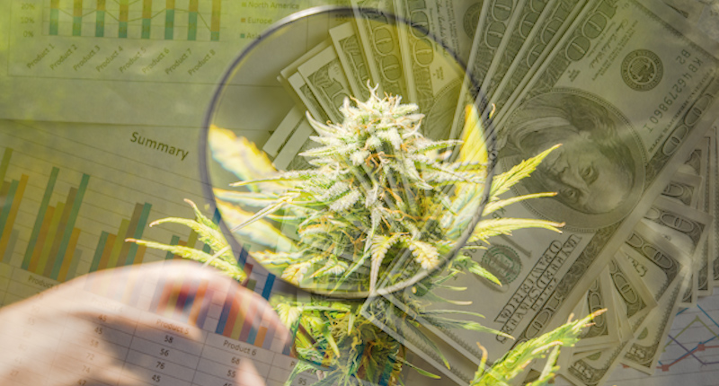 March Madness For Cannabis Stocks