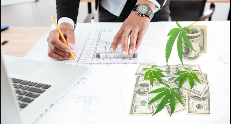 Best Cannabis Stocks For Gains In MArch