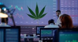 Best Cannabis Stocks To Invest in Right Now In March