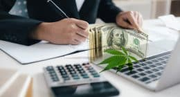 Best Marijuana Stocks For A Rebound