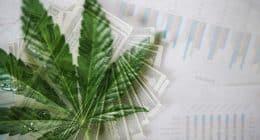 Best Marijuana Stocks To Watch Today In The Market