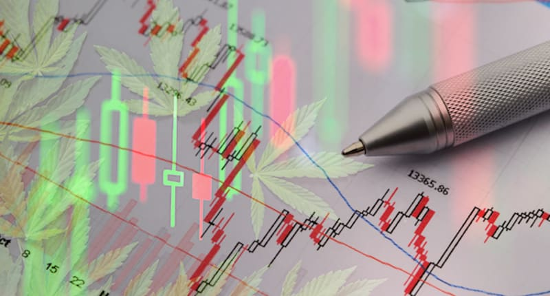 Marijuana Stocks To Watch For This Week In March