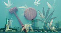NY Cannabis Legalization