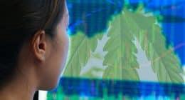 Top Marijuana Stocks For Your Watchlist Next Week In April
