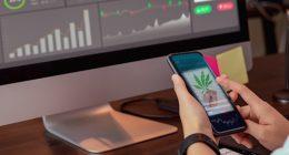 Top Marijuana Stocks To Buy April First