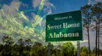 Alabama Legal Cannabis