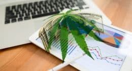 Best Pot Stocks First Week Of May