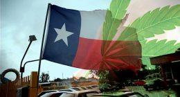 Texas Legalizes Marijuana