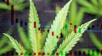 Cannabis Stocks In 2021 To Invest in