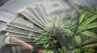 The Cannabis Stocks In June 2021
