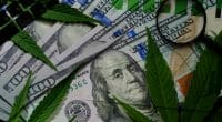 Top Marijuana Stocks For Your Watchlist Right Now